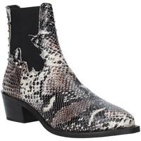Sapatos Mulher Botins Apepazza 9FCLM05 Cinzento