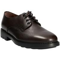 Sapatos Homem Sapatos Maritan G 111333 Castanho