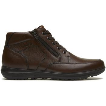 Sapatos Homem Botas baixas Enval 2231311 Castanho