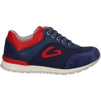 Sapatos Criança Sapatilhas Alberto Guardiani GK23301 Azul