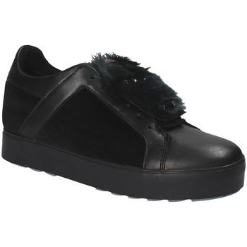 Sapatos Mulher Sapatilhas Apepazza RSW03 Preto