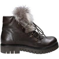 Sapatos Mulher Botas baixas Mally 5985 Castanho