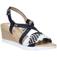 Sapatos Mulher Sandálias Valleverde 32305 Azul
