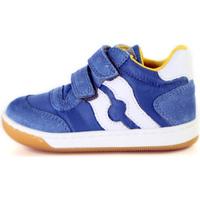 Sapatos Criança Sapatilhas Falcotto 2014156 01 Azul