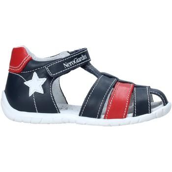 Sapatos Criança Sandálias Nero Giardini E019070M Azul