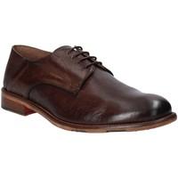 Sapatos Homem Sapatos Exton 3101 Castanho
