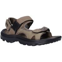 Sapatos Homem Sandálias Lotto T4769 Castanho