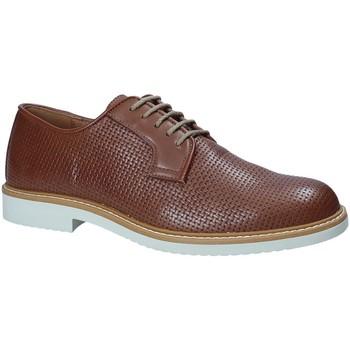 Sapatos Homem Sapatos IgI&CO 1105122 Castanho