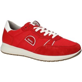 Sapatos Homem Sapatilhas IgI&CO 1120344 Vermelho