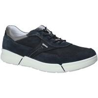 Sapatos Homem Sapatilhas IgI&CO 1126 Azul
