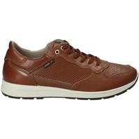 Sapatos Homem Sapatilhas Enval 1211422 Castanho