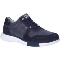 Sapatos Homem Sapatilhas Stonefly 110701 Azul