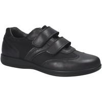 Sapatos Homem Sapatilhas IgI&CO 1101 Preto