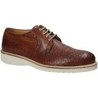 Sapatos Homem Sapatos Exton 886 Castanho