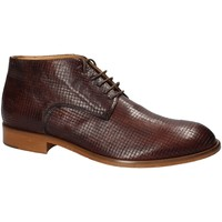 Sapatos Homem Botas baixas Exton 5355 Castanho