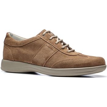 Sapatos Homem Sapatilhas Stonefly 110611 Castanho