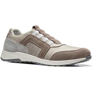 Sapatos Homem Sapatilhas Stonefly 110791 Castanho