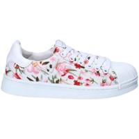 Sapatos Rapariga Sapatilhas Silvian Heach SH-S18-01 Branco