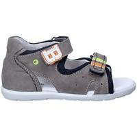Sapatos Criança Sandálias Balducci CITA1082 Cinzento