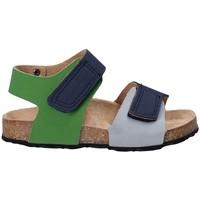 Sapatos Criança Sandálias Asso 64204 Cinzento