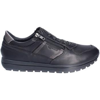 Sapatos Homem Sapatilhas IgI&CO 2136400 Preto