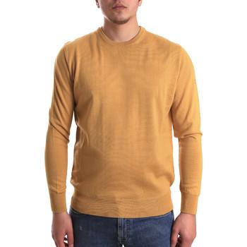 Textil Homem camisolas Navigare NV1100530 Amarelo