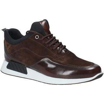 Sapatos Homem Sapatilhas Exton 162 Castanho