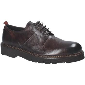 Sapatos Homem Sapatos Exton 390 Castanho