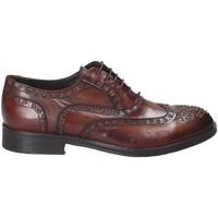 Sapatos Homem Sapatos Exton 5358 Castanho