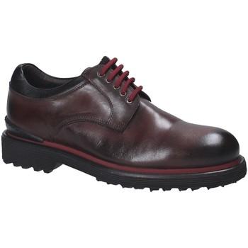 Sapatos Homem Sapatos Exton 940 Castanho