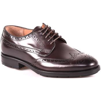 Sapatos Homem Sapatos Maritan G 112486MG Castanho