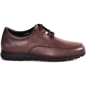Sapatos Homem Sapatilhas Soldini 20583 P Castanho