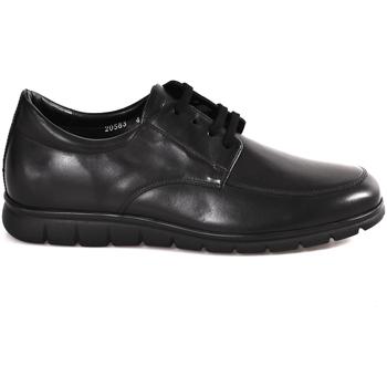 Sapatos Homem Sapatos Soldini 20583 P Preto