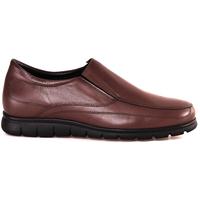 Sapatos Homem Mocassins Soldini 20366 P Castanho