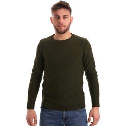 Textil Homem camisolas Bradano 155 Verde