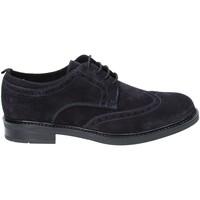 Sapatos Homem Sapatos Rogers 1260 Azul