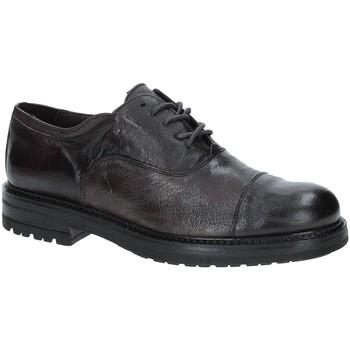 Sapatos Homem Sapatos Exton 692 Castanho