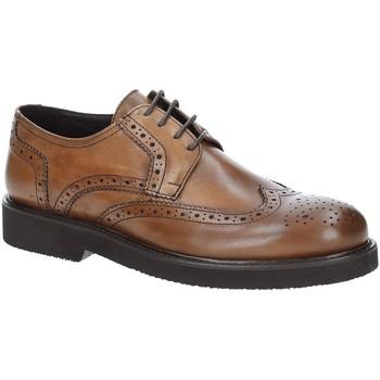 Sapatos Homem Sapatos Exton 5446 Castanho