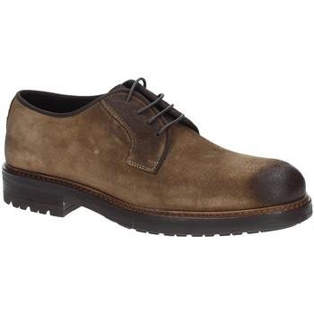 Sapatos Homem Sapatos Exton 690 Castanho