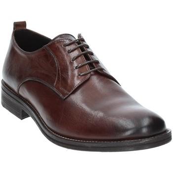 Sapatos Homem Sapatos Exton 9553 Castanho