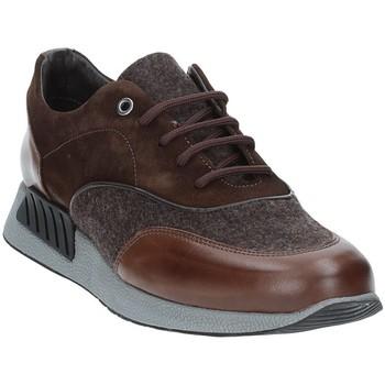 Sapatos Homem Sapatilhas Exton 161 Castanho