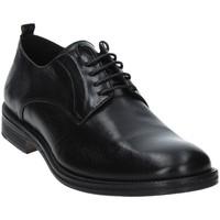 Sapatos Homem Sapatos Exton 9553 Preto