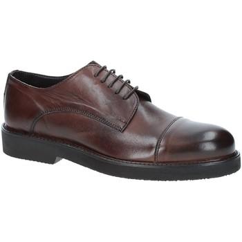 Sapatos Homem Sapatos Exton 5413 Castanho