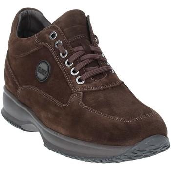 Sapatos Homem Botas baixas Exton 2029 Castanho
