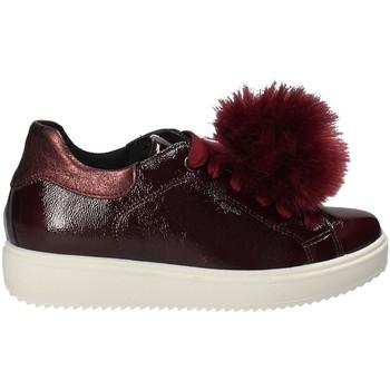 Sapatos Mulher Sapatilhas IgI&CO 2154844 Vermelho
