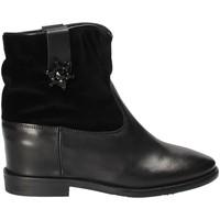 Sapatos Mulher Botins Tommy Hilfiger FW0FW03435 Preto