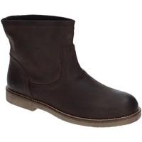 Sapatos Mulher Botins Grace Shoes 1839 Castanho