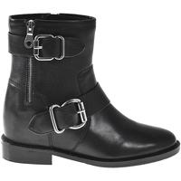 Sapatos Mulher Botins Elvio Zanon I7005N Preto
