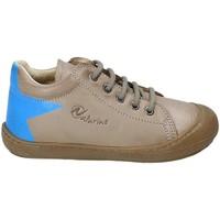 Sapatos Criança Sapatilhas Naturino 2012120-01-9103 Castanho