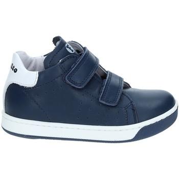 Sapatos Criança Sapatilhas Falcotto 2012363-01-9104 Azul